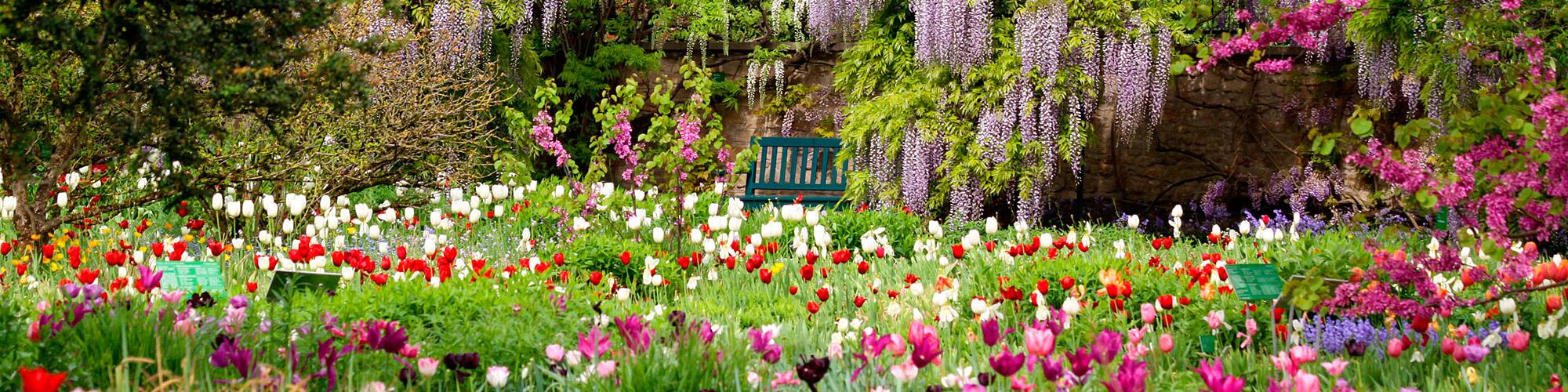 walker gartenbau sindelfingen ? natur. form. vollendet. - Gartengestaltung Mit Steinen Und Blumen